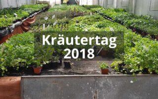 Kräutertag 2018 - Gärtnerei Blohm||Coca-Cola-Strauch