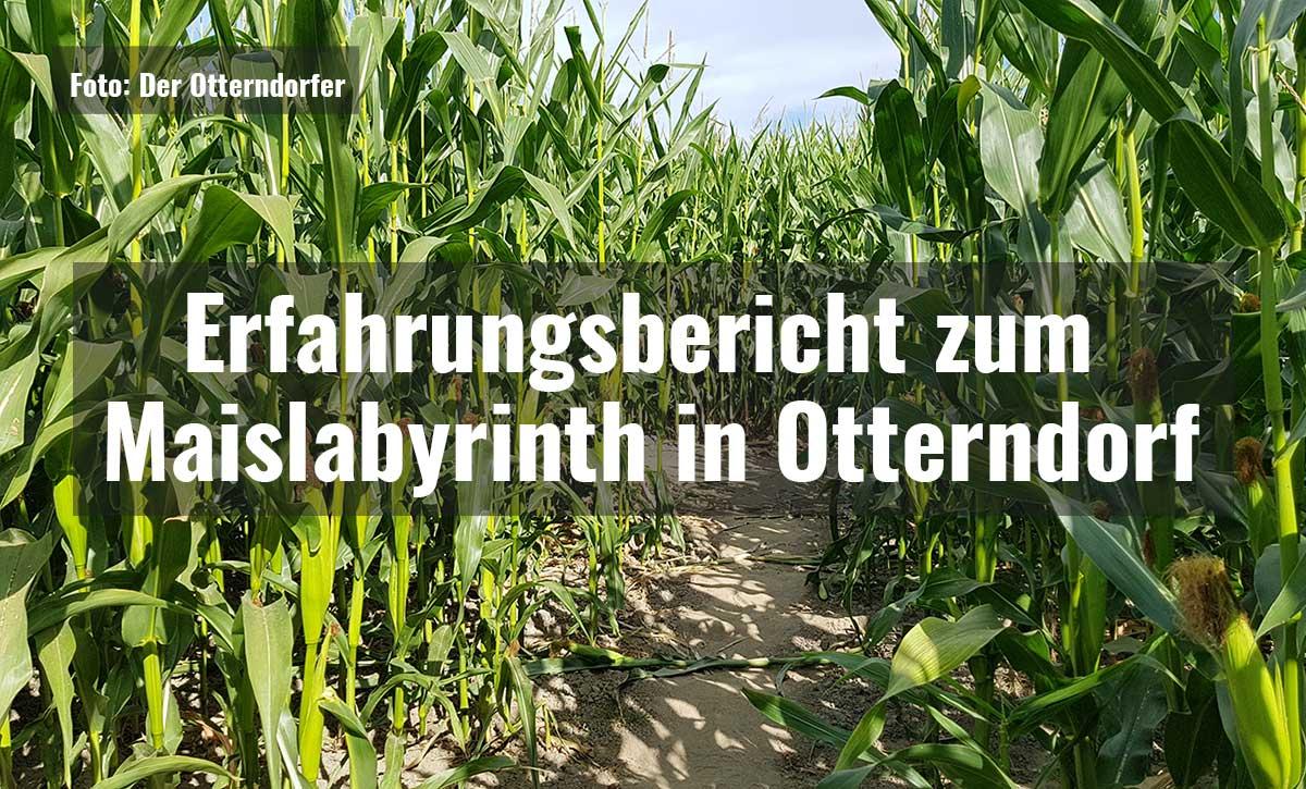 Erfahrungsbericht zum Maislabyrinth in Otterndorf||Maislabyrinth in Otterndorf - Der Eingang||Maislabyrinth in Otterndorf