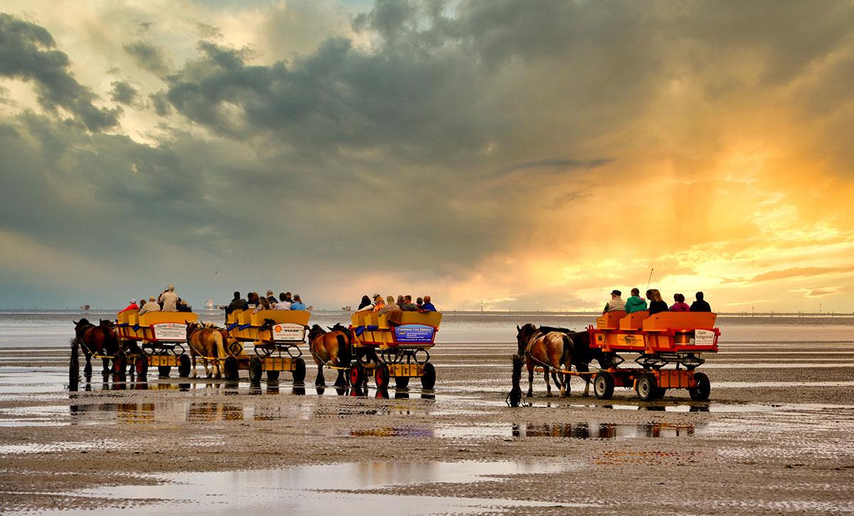 Neuwerk-Wattwagen an der Nordsee