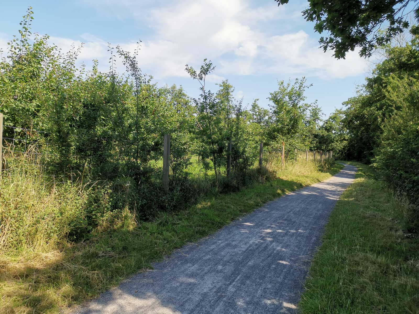 Norderteiler Deichweg